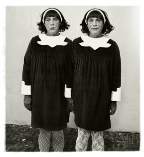 Diane_Arbus___Identical_Twins,_Roselle,_New_Jersey_(1967),_2014